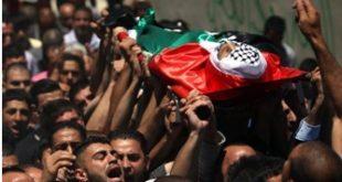 10 شهداء منذ ساعات الفجر: 119 شهيداً و830 جريحاً في العدوان المتواصل على غزة